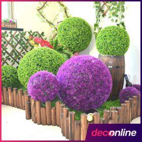 Dísznövény kert dekorációhoz