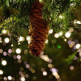 Karácsonyi girland és boa