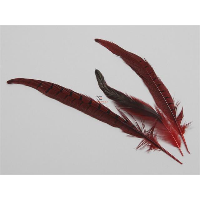 Fácán toll piros 24 db/cs dekorációs kellék